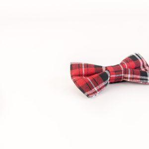 پاپیون رسمی خرید پاپیون از ایشومر اکسسوری آقایان bow-tie-new-10