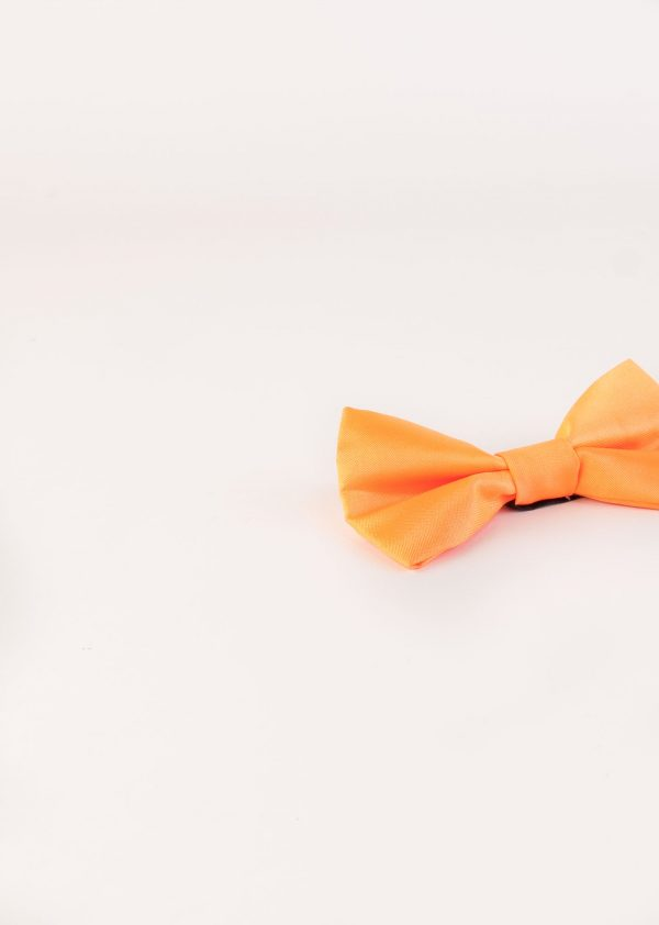 پاپیون رسمی خرید پاپیون از ایشومر اکسسوری آقایان bow-tie-new-14