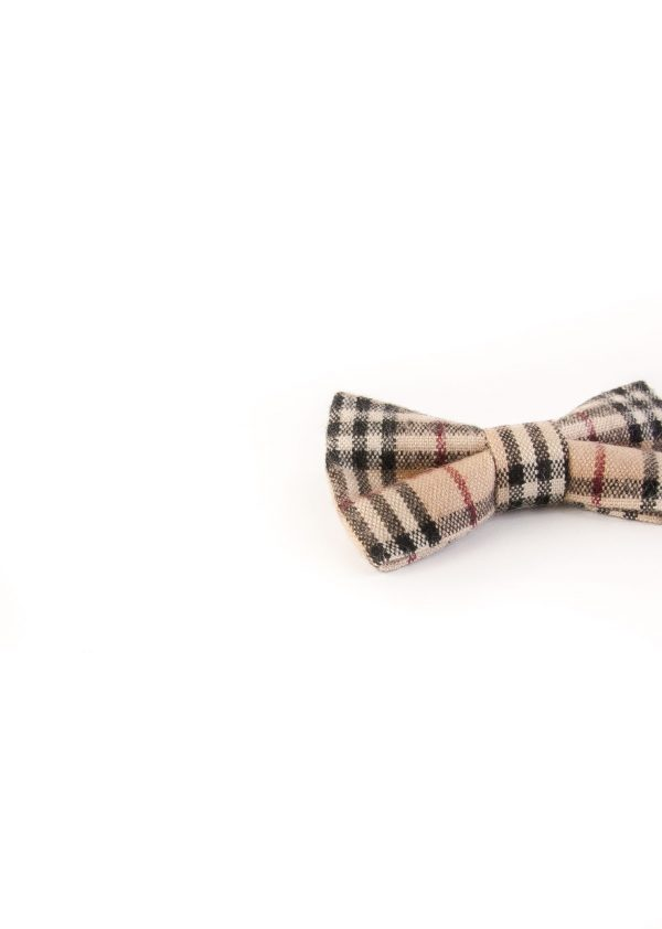 پاپیون رسمی خرید پاپیون از ایشومر اکسسوری آقایان bow-tie-new-15