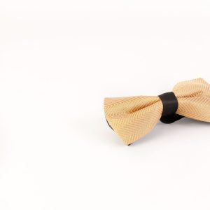 پاپیون رسمی خرید پاپیون از ایشومر اکسسوری آقایان bow-tie-new-52