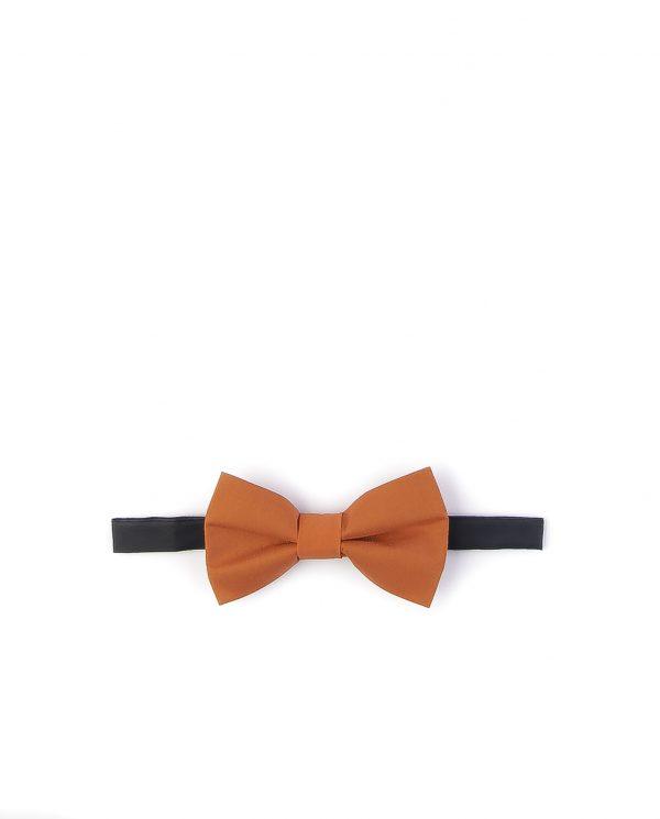 پاپیون رسمی خرید پاپیون از ایشومر اکسسوری آقایان bow-ties-1 (35)