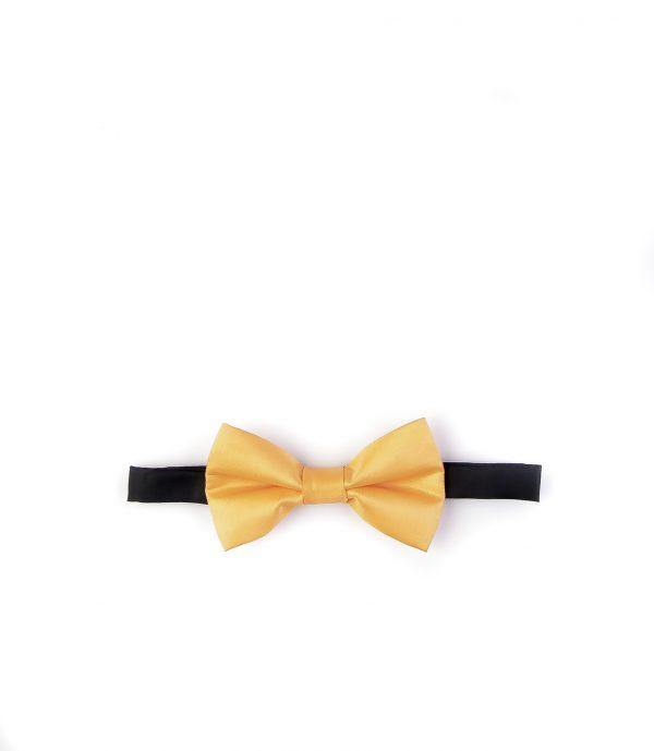پاپیون رسمی خرید پاپیون از ایشومر اکسسوری آقایان bow-ties-1 (39)