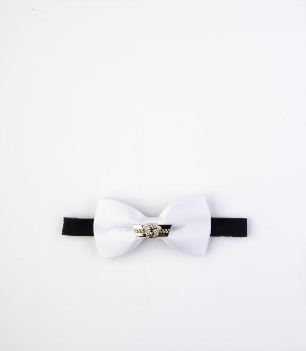 پاپیون رسمی خرید پاپیون از ایشومر اکسسوری آقایان bow-ties-1 (59)