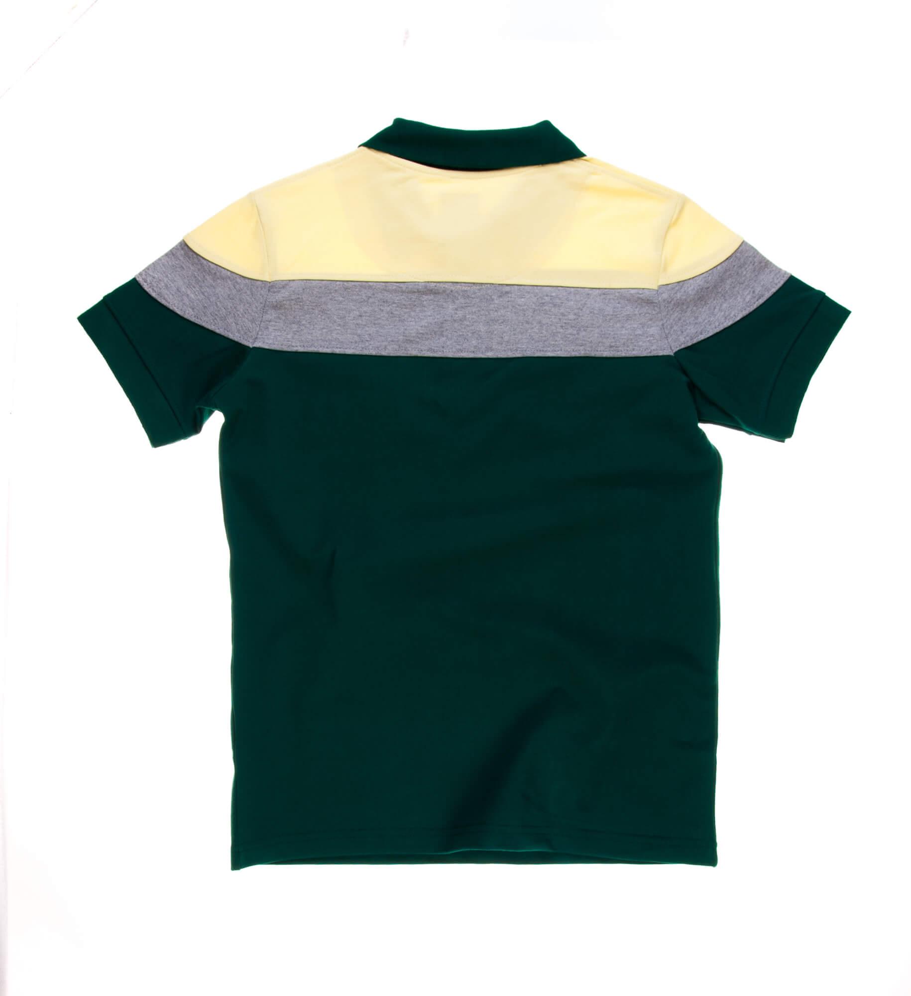 تی شرت یقه دار مردانه طرح PS1049-MD