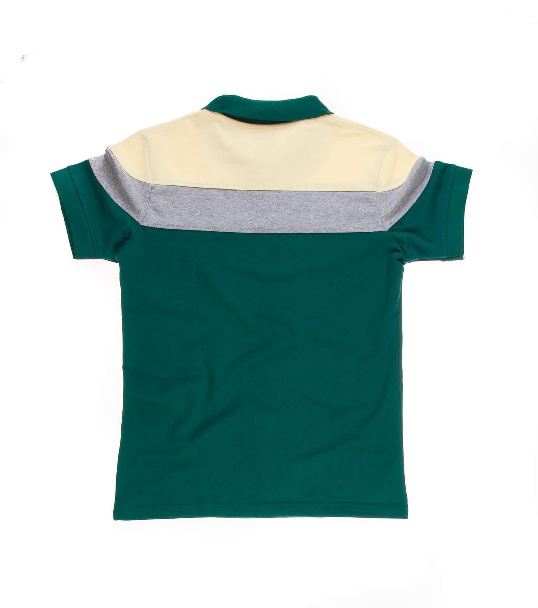 تی شرت یقه دار مردانه طرح PS1069-U.S POLO